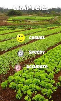 Fruits and Vegetables Blast apk screenshot