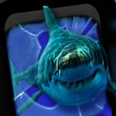 Angry Shark Pet Cracks icon