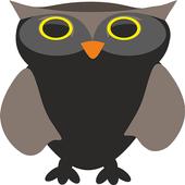 Bird Jumper icon