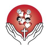House of Joy icon