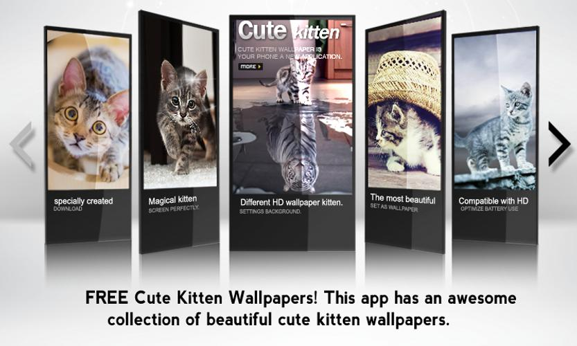 Cute Cats Wallpapers Hd For Android Apk Download