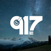 Radio Verdad 91.7 icon