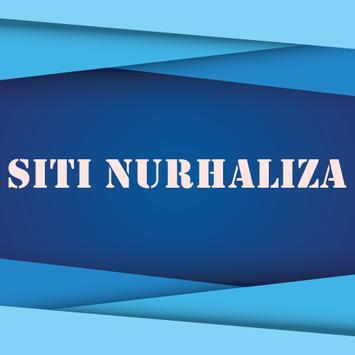 Kumpulan Lagu SITI NURHALIZA Lengkap poster