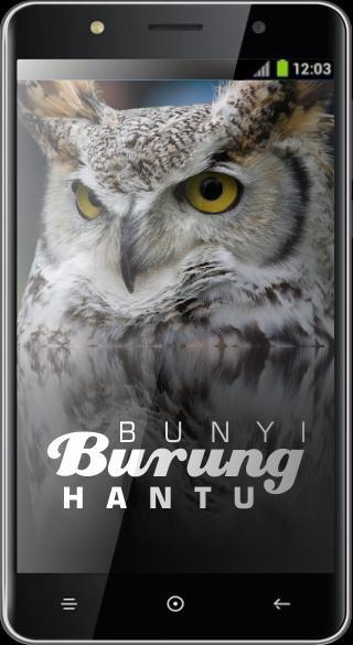 Bunyi Burung Hantu For Android Apk Download