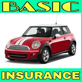 Basic Insurance icon