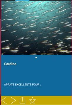 L'Espadon Frontignan apk screenshot