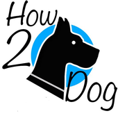How2dog icon