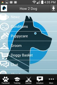 How2dog poster