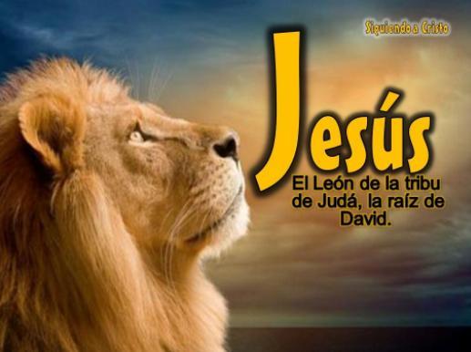 Imagenes Cristianas Con Textos Biblicos For Android Apk Download