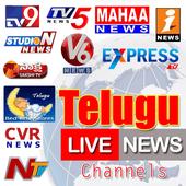 Telugu Vaarthalu icon