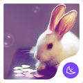 Cartoon Kawaii Pink Rabbit APUS Launcher theme