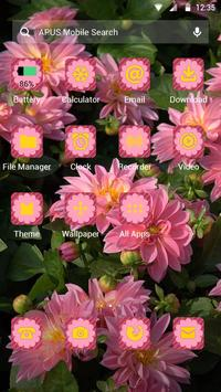 Flowers|APUS Launcher theme apk screenshot