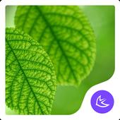 Green APUS Launcher theme icon