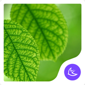 Green|APUS Launcher theme icon