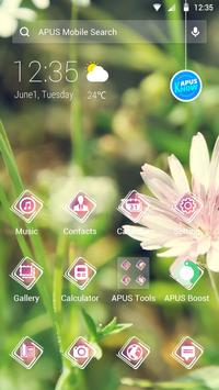 Daisy-APUS Launcher theme poster