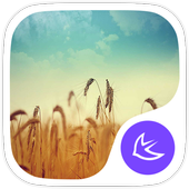 Dreams-APUS Launcher theme icon