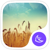 Dream world theme for APUS icon