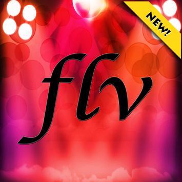 Online flv flash player poster