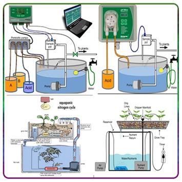 aquaponics techniques ideas poster