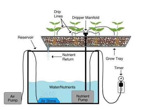 aquaponics techniques ideas screenshot 1