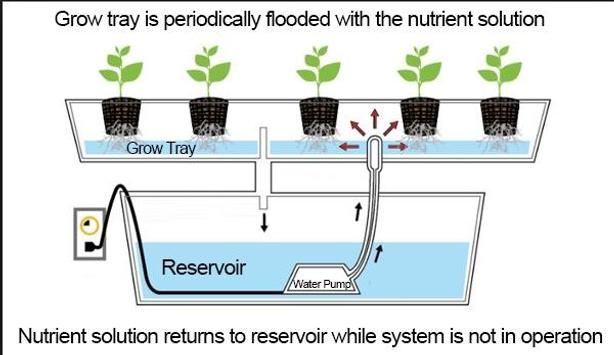 aquaponics techniques ideas screenshot 4