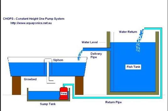 aquaponics techniques ideas screenshot 5