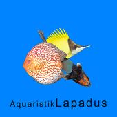 Aquaristik Lapadus icon