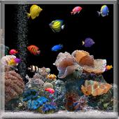 Aquarium Fish Wallpaper icon