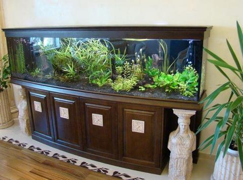 Aquarium Decoration Ideas screenshot 2