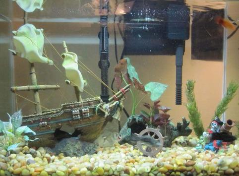 Aquarium Decoration Ideas screenshot 5