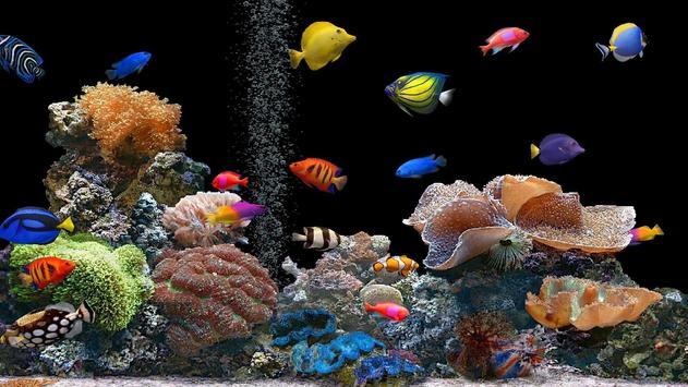 Aquarium Wallpaper 2018 Pictures HD Images Free screenshot 11