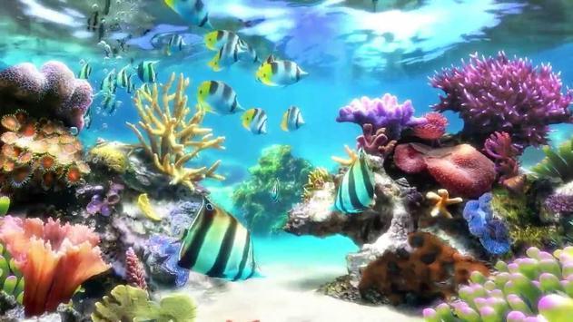 Aquarium Wallpaper 2018 Pictures HD Images Free screenshot 16