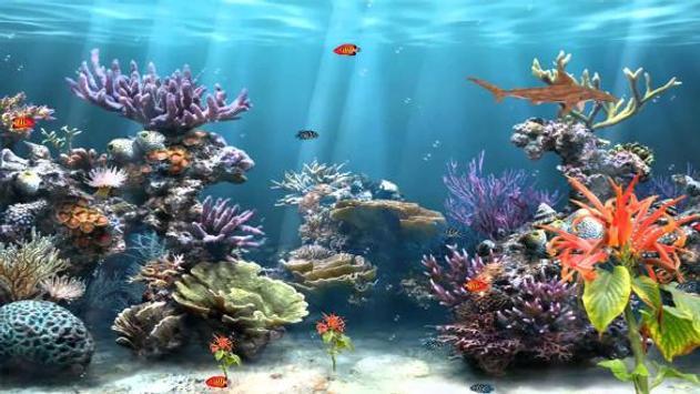 Aquarium Wallpaper 2018 Pictures HD Images Free screenshot 23