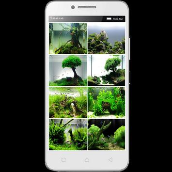 Aquascape Design Ideas apk screenshot