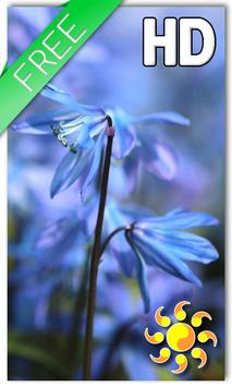 Blue Flower Live Wallpaper poster