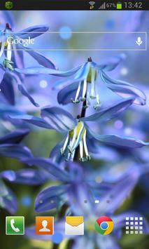 Blue Flower Live Wallpaper apk screenshot