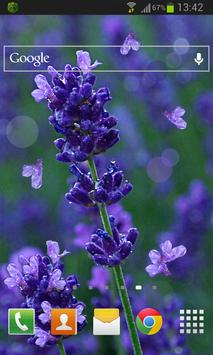 Lavender Flowers LWP apk screenshot
