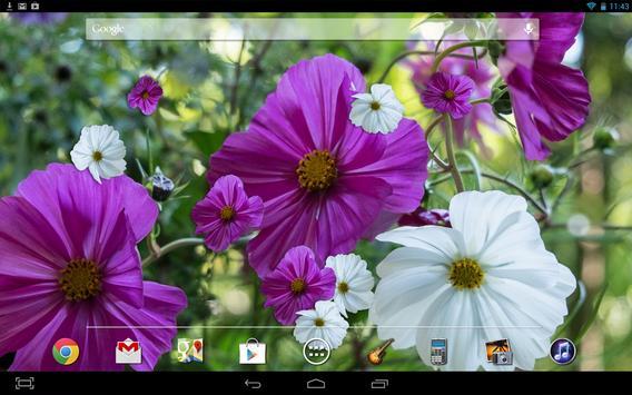Summer Flowers Live HD apk screenshot
