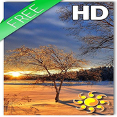 Sunset Livewallpaper HD Winter icon