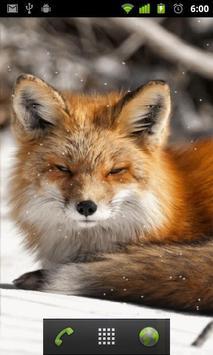 arctic fox wallpaper screenshot 1