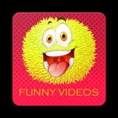 فيديوهات كوميدية icon