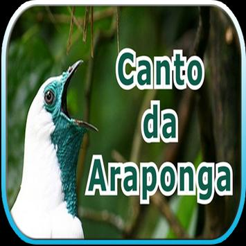 Canto da Araponga screenshot 1