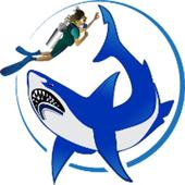 Scuba Divers Dream icon