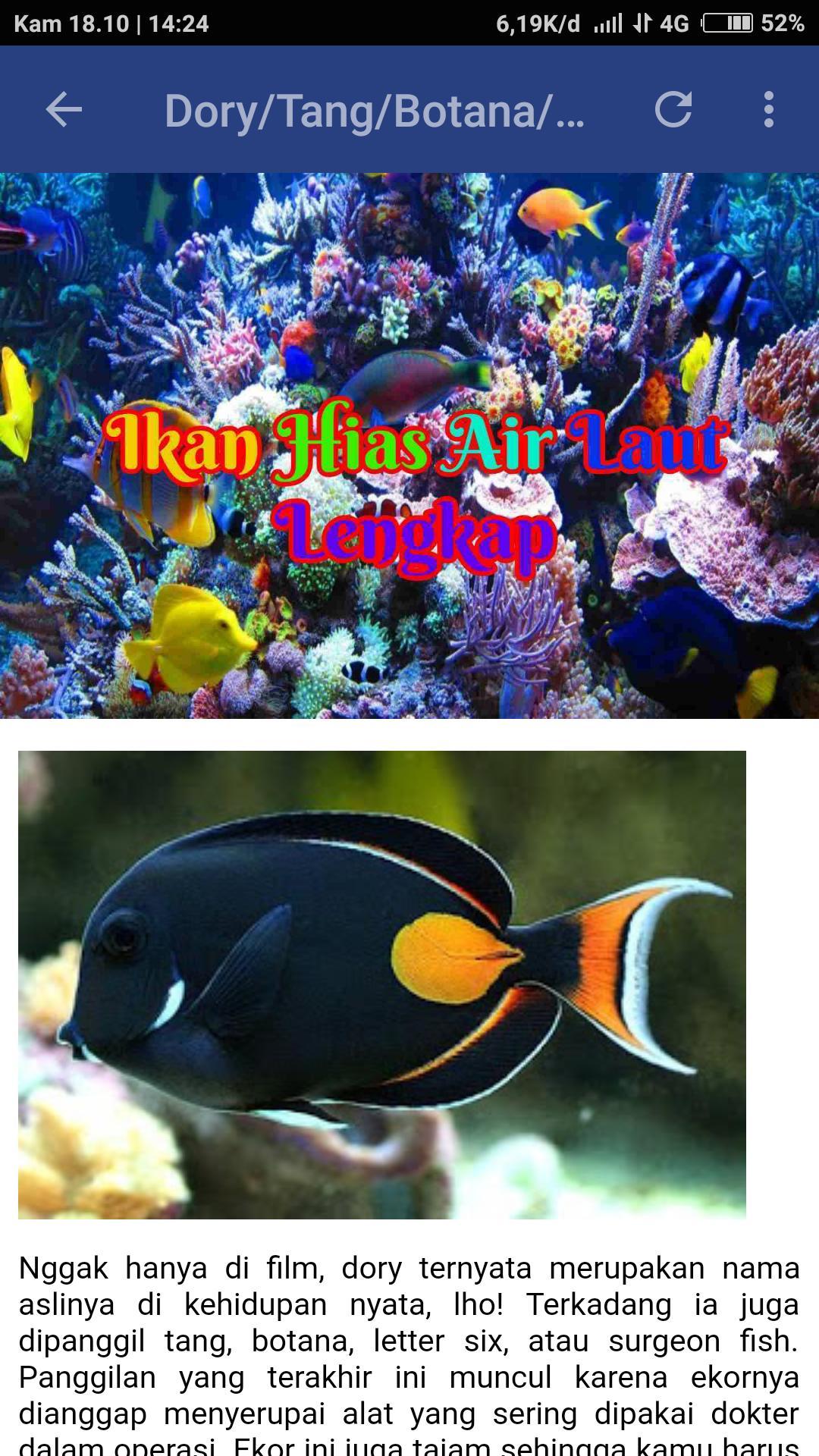 Jenis Ikan Hias Air Laut Dan Gambarnya Ikan Hias Air Laut Lengkap Para Android Apk Baixar