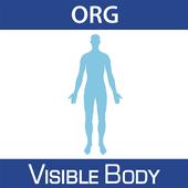 Human Anatomy Atlas (Org.) icon