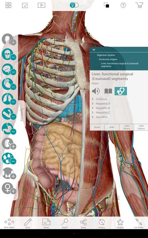 Human Anatomy Atlas 7 Springer Apk Download Free Medical App For