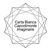 Carta Bianca icon