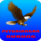 Bird Adventur icon