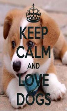 Keep calm Love Pet Wallpaper poster