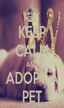 Keep calm Love Pet Wallpaper screenshot 1